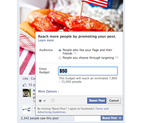 fb-pp-promote-options